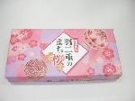 羽二重のまち・桜(5個入)【期間限定】